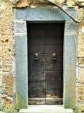Rocznika stylowy drzwi, antyczny czas, historia, lwy i bajka, obrazy royalty free