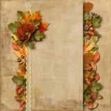 Rocznika tło z wspaniałymi rabatowymi jesieni dekoracjami Obraz Stock