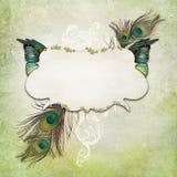 Rocznika tło z motylem Obrazy Stock