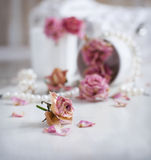Rocznika wciąż życie z suchymi różami Zdjęcie Stock