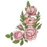 Rocznika wektorowy kwiecisty skład ilustracji