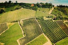 Rocznika widoku wzgórza Tuscany z winnicą Obrazy Royalty Free