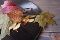 Rocznika winylowy rejestr i jesień liście zdjęcie royalty free