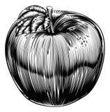 Rocznika Woodcut Apple ilustracja wektor