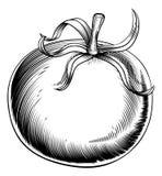 Rocznika woodcut retro pomidor royalty ilustracja