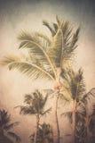 Roczniki Textured drzewka palmowe zdjęcie stock
