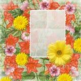 Roczników kwiatów rama Fotografia Royalty Free