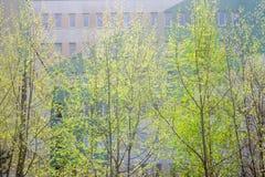 Roczny wiosny odnowienie miasto zdjęcie stock