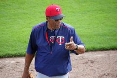 Rod Carew - Minnesota Twins Royaltyfri Bild