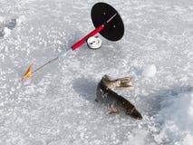 Rod et brochet sur la pêche d'hiver Image stock
