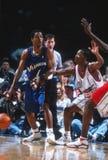 Rod Strickland Washington Wizards arkivbild