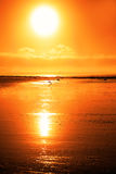 Rod on a sunset beach Royalty Free Stock Photography