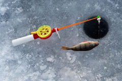 The rod for winter fishing Stock Images