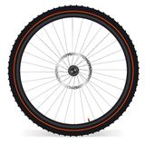Roda da bicicleta Fotografia de Stock