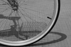Roda da bicicleta do BW Imagens de Stock