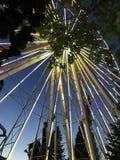 Roda de Farris Fotografia de Stock Royalty Free