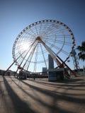 Roda de Ferris da cidade de Batumi perto da praia em Geórgia imagem de stock royalty free