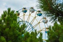 Roda de Ferris entre os ramos do abeto vermelho Imagem de Stock Royalty Free