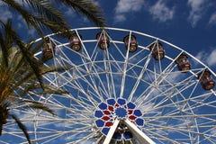 Roda de Ferris tropical Imagem de Stock Royalty Free