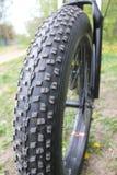 Roda de minha gordura da bicicleta - bicicleta fotos de stock royalty free