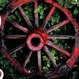Roda de vagão gastada Fotografia de Stock
