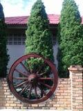 Roda de vagão Oksn Foto de Stock