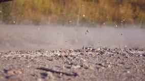 A roda do carro é deslizamento em uma estrada asfaltada durante o começo do movimento As pedras e a sujeira pequenas são mosca pa vídeos de arquivo