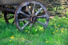 Roda do transporte de madeira fotos de stock