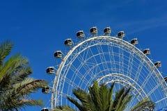 Roda gigante, vista da movimentação internacional, Orlando, Florida imagens de stock