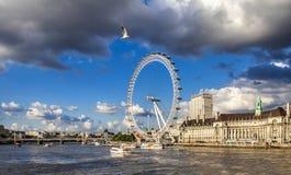 Roda grande Thames River de Londres e uma gaivota Fotografia de Stock Royalty Free