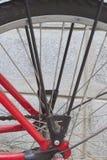 A roda traseira da bicicleta vermelha estacionou na parede lateral Foto de Stock