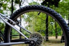 Roda traseira do Mountain bike dos esportes na natureza fotografia de stock