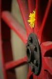Roda vermelha Imagem de Stock