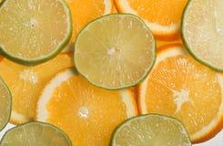 Rodajas de naranja y limon Arkivfoton