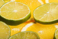 Rodajas de naranja y limon. Juicy slices of lemon and orange with white background Royalty Free Stock Image