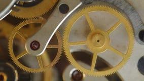 Rodas denteadas do metal dentro do maquinismo de relojoaria vídeos de arquivo