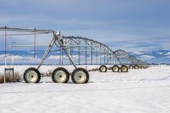 Rodas do inverno Imagens de Stock