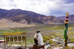 Rodas e chaminé de oração em Yumbulakhang que negligencia o vale de Yarlung - Tibet Fotos de Stock Royalty Free