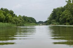 Rodd på sjön Tisza, Ungern Royaltyfri Fotografi