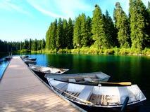Roddbåtar längs en skeppsdocka med sörjer träd och smaragdvatten längs banken på den klara sjön i Oregon arkivbild