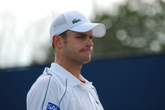 Roddick Andy - American tennis star Royalty Free Stock Image