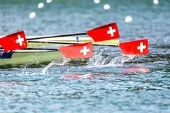 Roddregatta paddlar det schweiziska banret arkivfoton