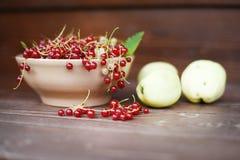 Rode aalbes in een kleischotel en appelen Stock Afbeelding