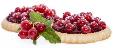 Rode aalbes (Geïsoleerde) Cupcake Stock Foto's
