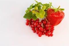Rode aalbes met Aardbei op witte achtergrond, rode natuurlijke aardbei, gezond voedsel wordt geïsoleerd dat Stock Foto