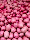 Rode aardappels op vertoning Royalty-vrije Stock Afbeeldingen