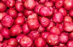 Rode aardappels op vertoning bij de markt van de landbouwer Stock Foto