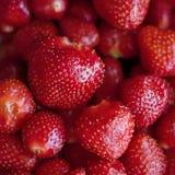 Rode aardbeien Stock Foto