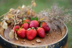 Rode aardbeien en droog gras op een houten wijnvat royalty-vrije stock foto's