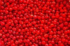 Rode achtergrond Royalty-vrije Stock Afbeeldingen